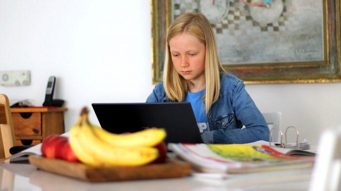 Freiwilliges Homeschooling - Quelle: Pressemeldung Nds. Kultusministerium